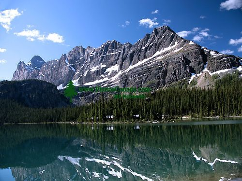 Lake O'Hara, Yoho National Park, British Columbia,Canada CM11-02