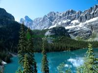 Highlight for Album: Lake O'Hara, Yoho National Park, British Columbia, Canadian National Parks Stock Photos