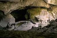 Little Huson Caves, Vancouver Island CM11-001
