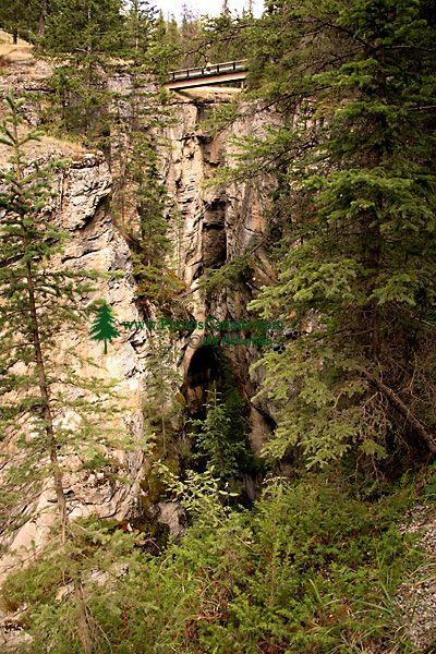 Maligne Canyon, Jasper National Park, Canada CM11-07