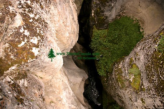 Maligne Canyon, Jasper National Park, Canada CM11-04