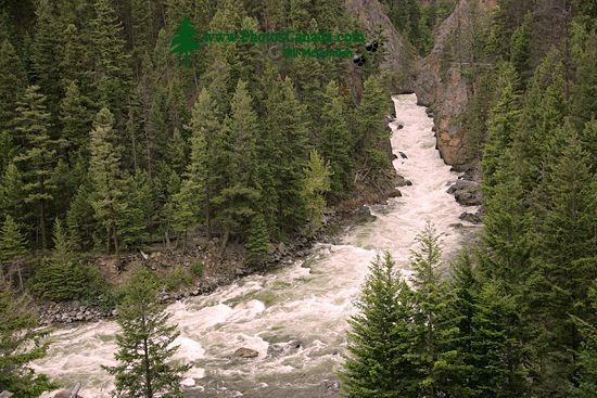 Manning Park, British Columbia, Canada CM11-04