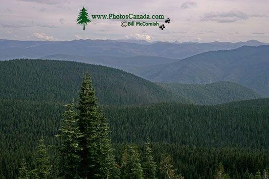 Manning Park (BC) Canada  city pictures gallery : Manning Provincial Park, British Columbia, Canada British Columbia ...