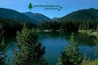 Highlight for Album: Manning Provincial Park, British Columbia, Canada - British Columbia Stock Photos