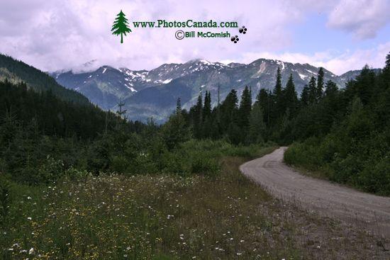 Mica Dam Region, Columbia River, British Columbia, Canada CM11-008