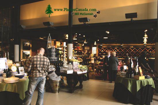 Mission Hill Winery, Kelowna, Okanagan Wine Region, British Columbia, Canada CM11-006