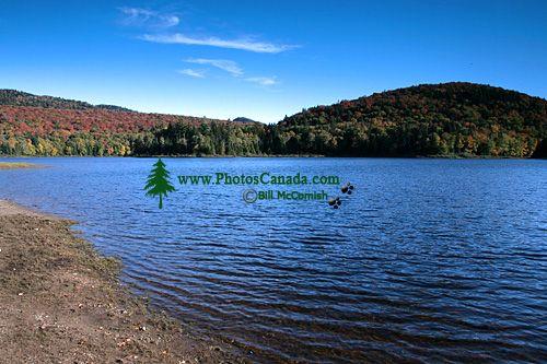 Mont Tremblant National Park, Quebec, Canada CM11-02