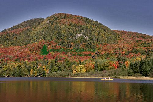 Mont Tremblant National Park, Quebec, Canada CM11-05