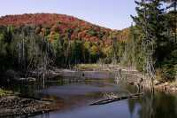 Mont Tremblant National Park, Quebec, Canada CM11-06