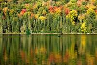 Highlight for Album: Mont Tremblant National Park Photos, Quebec, Canada, Stock Photos of Canada, Banque d'images des Provinces