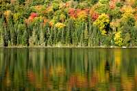 Mont Tremblant National Park, Quebec, Canada CM11-09
