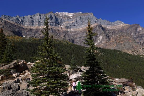 Moraine Lake Area 2013, Banff National Park, Alberta, Canada CMX-008
