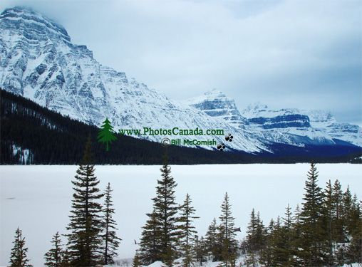 Mount Chephren, Lower Waterfowl Lake, Icefields Parkway, Jasper National Park, Alberta, Canada 02