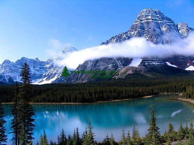 Mount Chephren, Mistaya Valley, Jasper National Park, Alberta, Canada 24