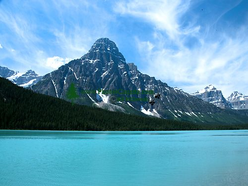 Mount Chephren, Lower Waterfowl lake, Icefields Parkway, Jasper National Park, Alberta, Canada CM11-04