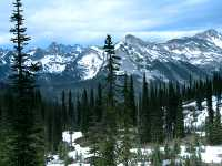 Mount Revelstoke National Park, British Columbia, Canada CM11-13