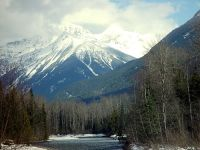 Mount Revelstoke National Park, British Columbia, Canada 08