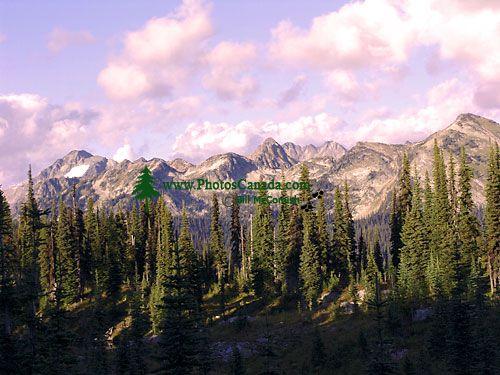Mount Revelstoke National Park, British Columbia, Canada 04