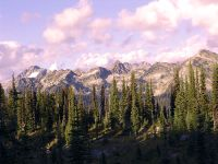 Mount Revelstoke National Park, British Columbia, Canada 04