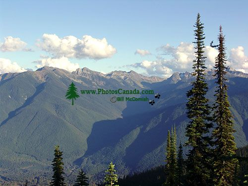 Mount Revelstoke National Park, British Columbia, Canada 02