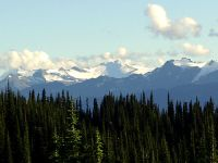 Mount Revelstoke National Park, British Columbia, Canada 01