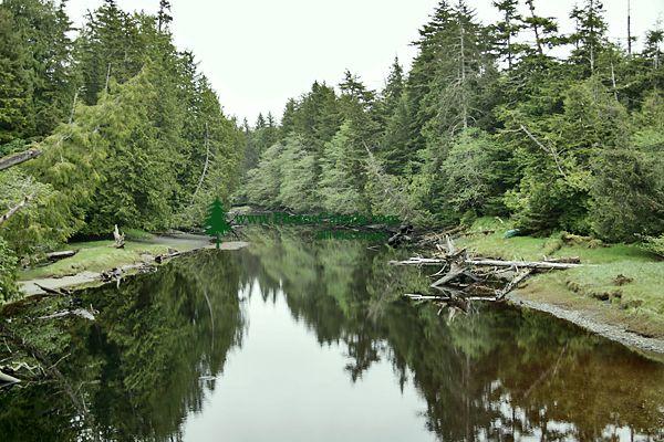 Naikoon Park, Sangan River, Queen Charlotte Islands, Haida Gwaii, British Columbia, Canada CM11-08