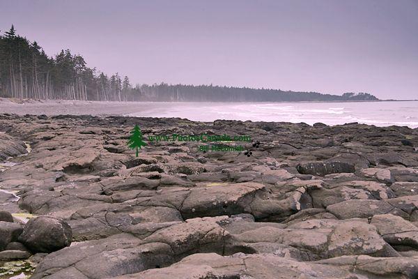 Naikoon Park, Agate Beach, Queen Charlotte Islands, Haida Gwaii, British Columbia, Canada CM11-02