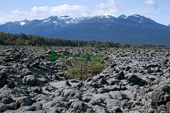 Nass Valley, Nisga'a Memorial Lava Beds,  British Columbia, Canada CM11-02