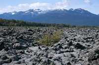 Nass Valley, Nisga'a Memorial Lava Beds,  British Columbia, Canada CM11-02