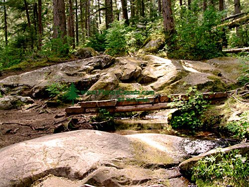Thorsen Creek Petroglyphs, Bella Coola, British Columbia, Canada 17