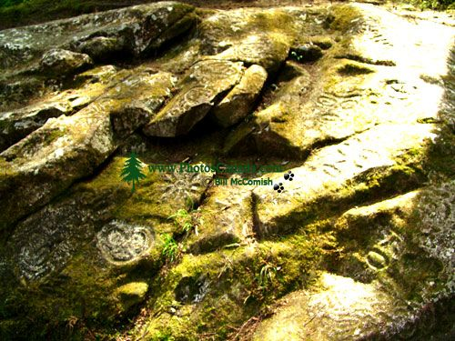 Thorsen Creek Petroglyphs, Bella Coola, British Columbia, Canada 18