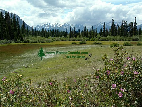 Ts,il,os Provincial Park, Nemiah Valley, Chilcotin, British Columbia, Canada 04