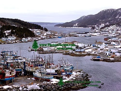 Aiguillettes Harbour, Englee, Newfoundland, Canada 10