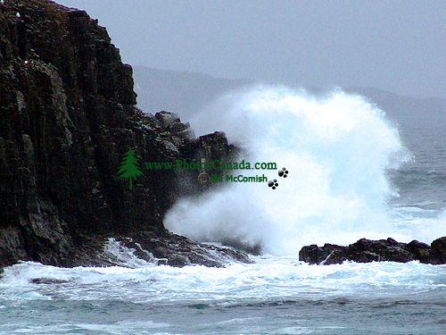North Atlantic Coast, Newfoundland, Canada 01