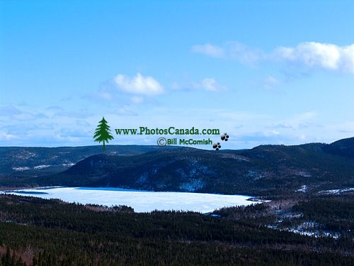Wiltondale, Newfoundland, Canada 04