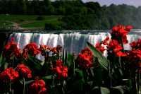 Niagara Falls, Ontario, Canada CM-1244