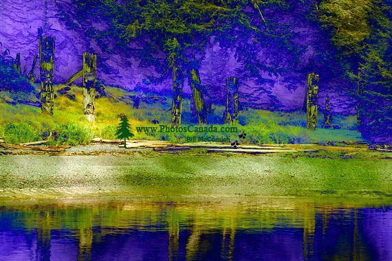 Ninstints Haida Village Remains, Anthony Island, Sgang Gwaay, UNESCO World Heritage Site, Gwaii Haanas National Park Reserve, Haida Gwaii, British Columbia, Canada CM11-01
