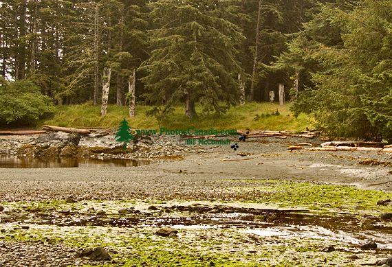 Ninstints Haida Village Remains, Anthony Island, Sgang Gwaay, UNESCO World Heritage Site, Gwaii Haanas National Park Reserve,  Haida Gwaii, British Columbia, Canada CM11-07