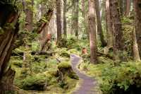 Ninstints, Sgang Gwaay, UNESCO World Heritage Site, Gwaii Haanas National Park Reserve, Haida Gwaii, British Columbia, Canada CM11-24