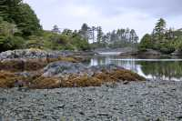 Ninstints Sheltered Bay, Sgang Gwaay, UNESCO World Heritage Site, Gwaii Haanas National Park Reserve, Haida Gwaii, British Columbia, Canada CM11-26