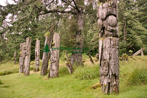 Ninstints Totem Poles, Anthony Island, Sgang Gwaay, UNESCO World Heritage Site, Gwaii Haanas National Park Reserve,  Haida Gwaii, British Columbia, Canada CM11-06
