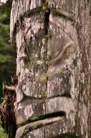 Ninstints Totem Pole, Sgang Gwaay, UNESCO World Heritage Site, Gwaii Haanas National Park Reserve, Haida Gwaii, British Columbia, Canada CM11-19