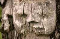 Ninstints Totem Pole, Sgang Gwaay, UNESCO World Heritage Site, Gwaii Haanas National Park Reserve, Haida Gwaii, British Columbia, Canada CM11-20