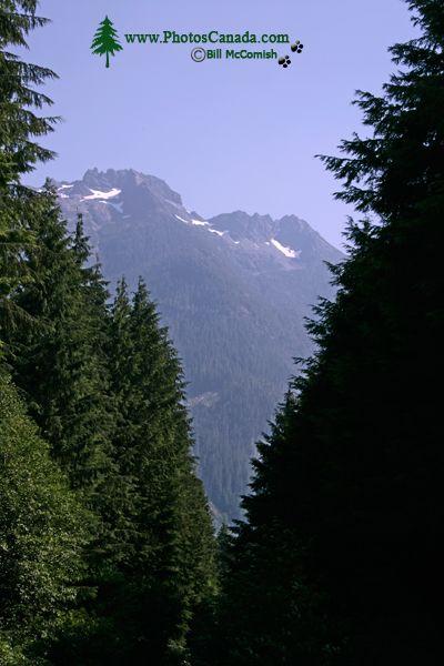 Zeballos Region, Vancouver Island CM11-002