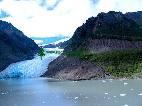 Bear Glacier, British Columbia, Canada 26