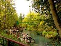 Liard River Hot Springs, British Columbia, Canada 23