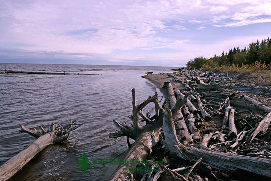 Great Slave Lake, Northwest Territories, CM11-34