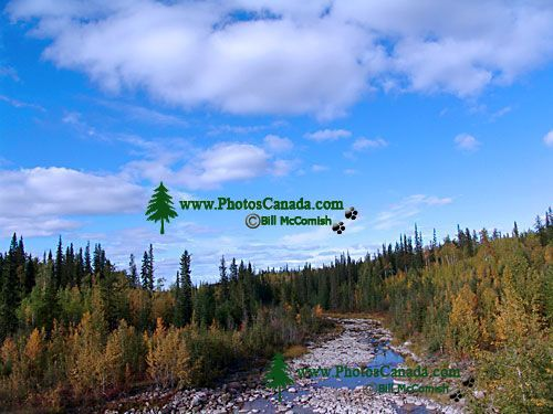 Liard Trail, Northwest Territories, Canada 07