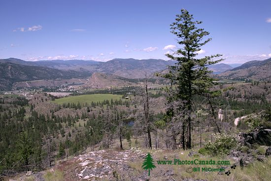 Okanagan Falls Wine Region, British Columbia CM-001