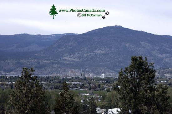 Okanagan Wine Region, British Columbia, Canada CM11-002